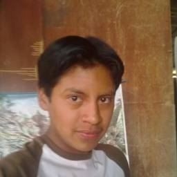 David00509